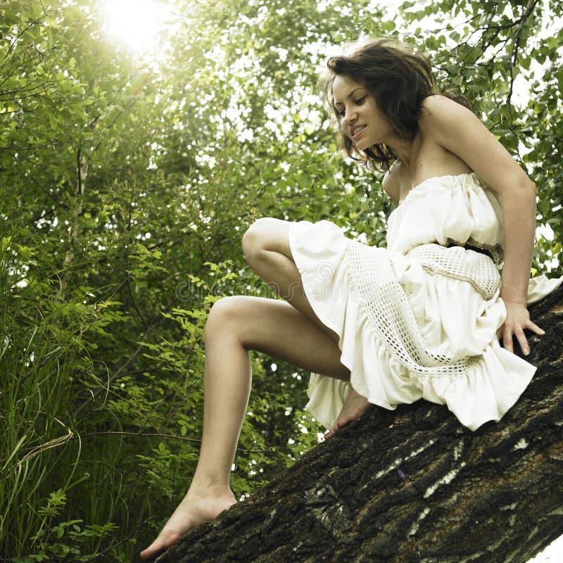 giovani fini della donna dell'albero fotografia stock