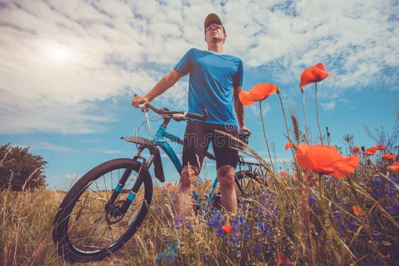 Giovani giri del ciclista sul campo del papavero immagini stock