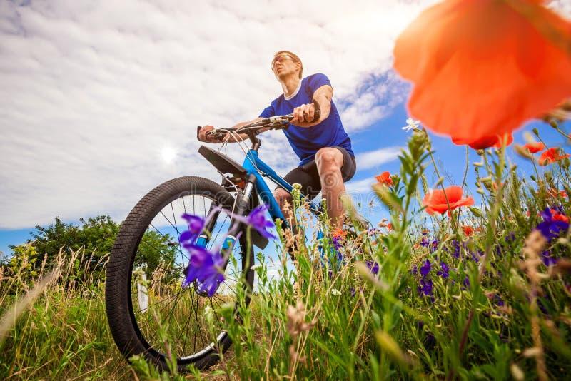 Giovani giri del ciclista sul campo del papavero fotografie stock