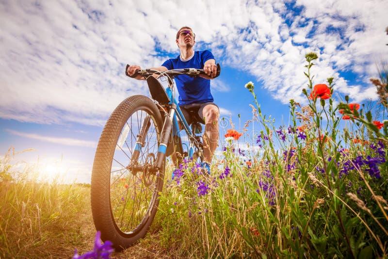 Giovani giri del ciclista sul campo del papavero fotografie stock libere da diritti