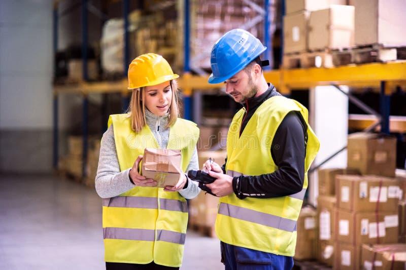 Giovani lavoratori del magazzino che lavorano insieme immagine stock