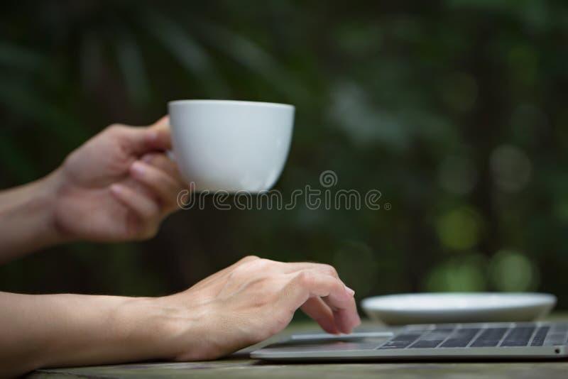 Giovani mani della donna di affari che scrivono sulla tastiera di computer portatile e che tengono la tazza di tè o del caffè fotografia stock libera da diritti