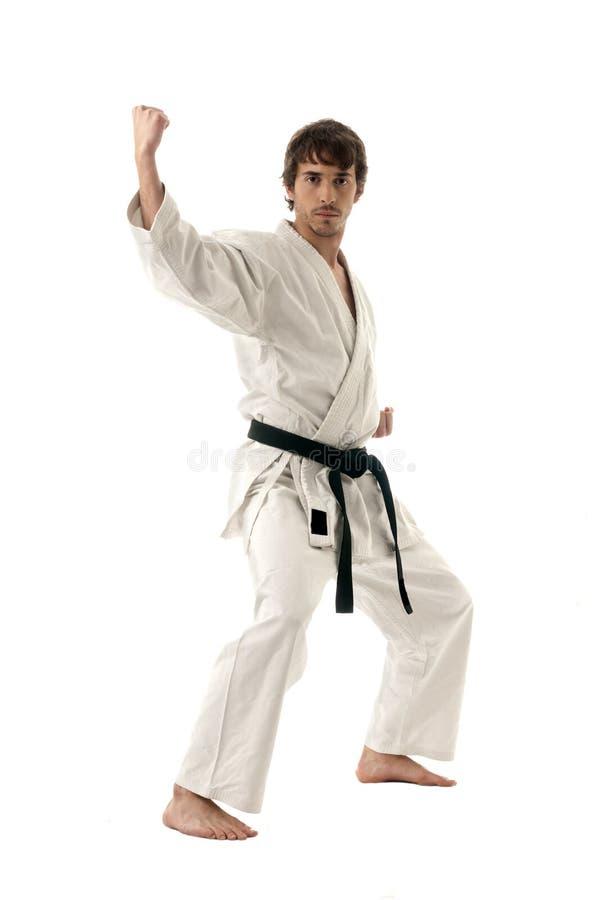Giovani maschii del combattente di karatè isolati su bianco fotografia stock