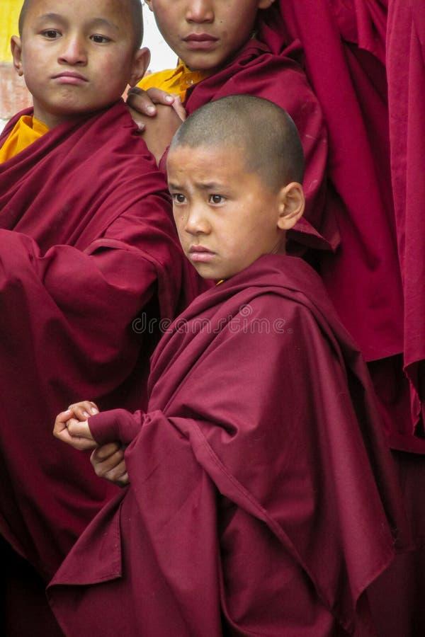 Giovani monaci buddisti nel monastero del Nepal fotografia stock libera da diritti