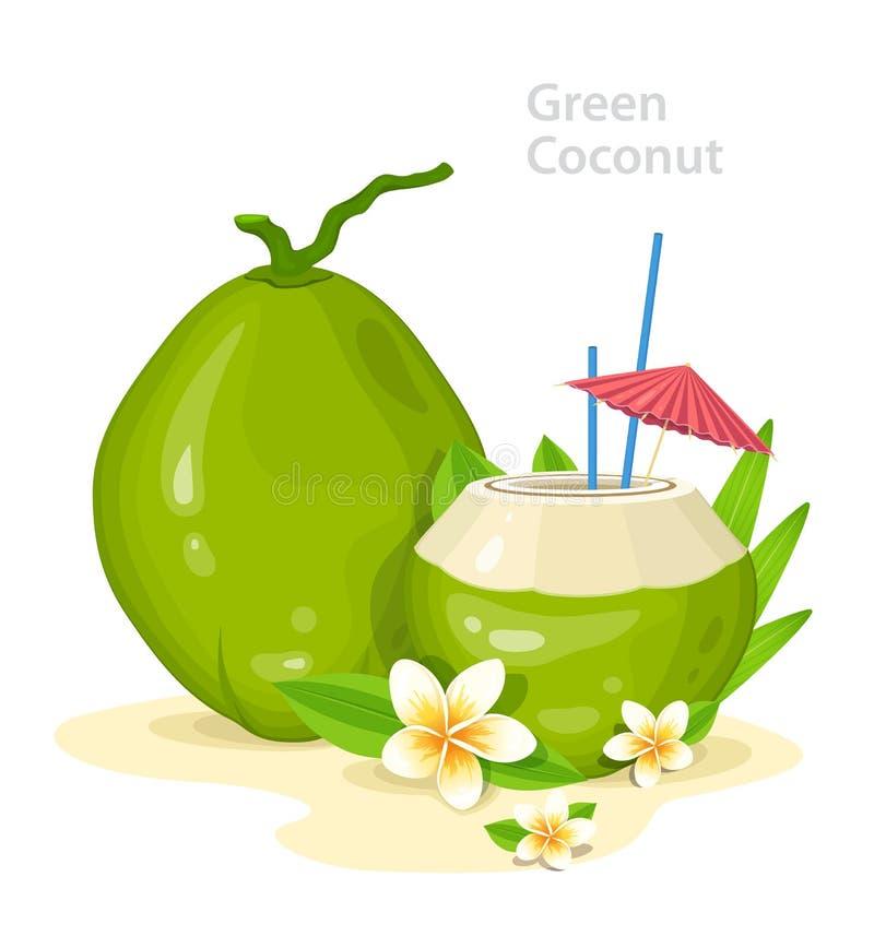 Giovani noci di cocco verdi Cocktail fresco della noce di cocco con i fiori, le paglie e l'ombrello di plumeria Attributo di vaca illustrazione di stock