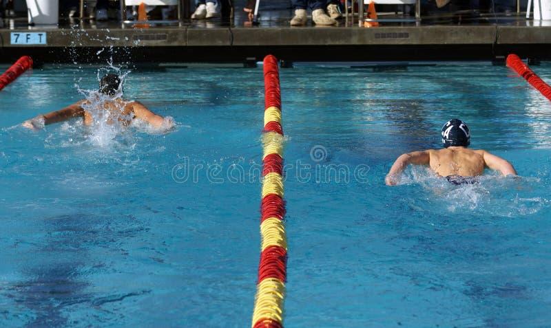 Giovani nuotatori maschii immagini stock libere da diritti