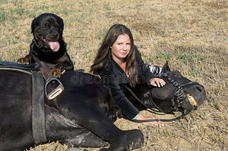 Giovani ragazza e rottweiler di guida immagine stock