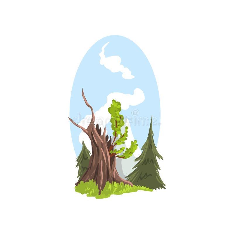 Giovani rami che crescono dal vecchio albero, abeti del paesaggio disegnato a mano dietro Conifero e latifoglie Fumetto piano illustrazione vettoriale