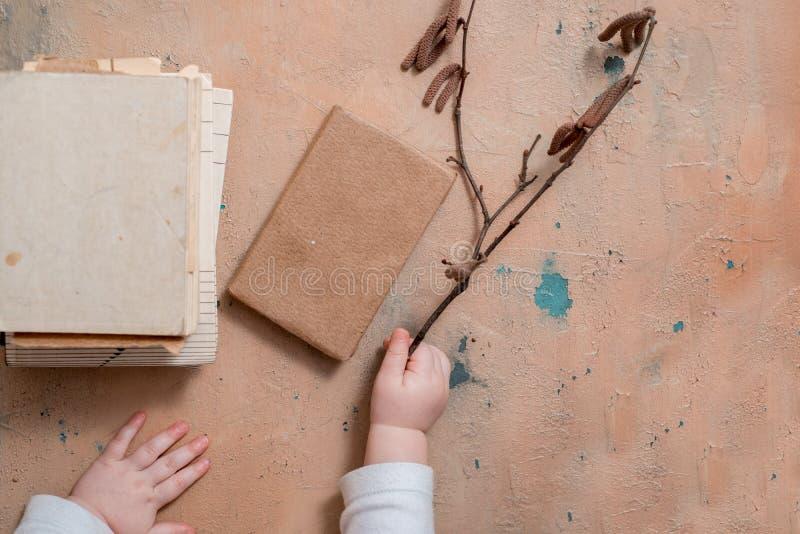 giovani rami della betulla e del libro su fondo di legno bianco bella natura morta della molla Fuoco molle fotografia stock