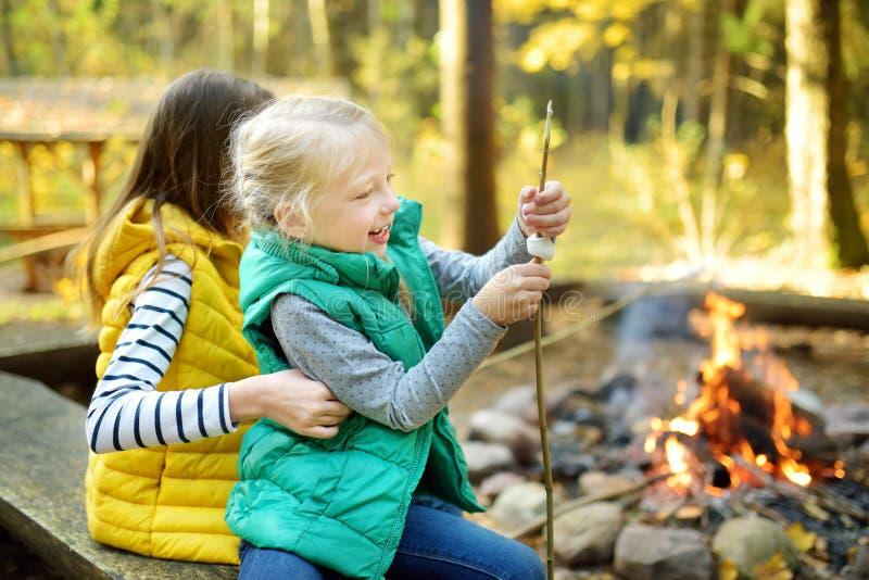 Giovani sorelle sveglie che arrostiscono le caramelle gommosa e molle sul bastone al falò Bambini divertendosi al fuoco del campo fotografia stock