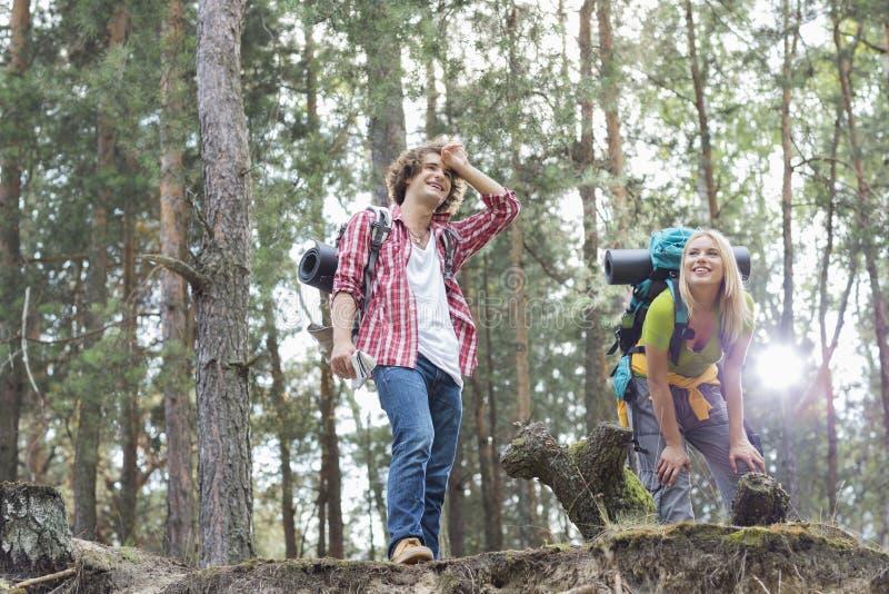 Giovani stanchi che fanno un'escursione le coppie che prendono una foresta di irrompere fotografia stock libera da diritti