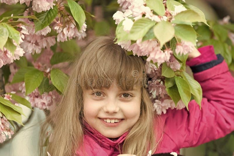 Gioventù, fioritura, freschezza fotografia stock