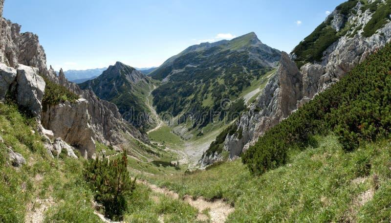 Gipfel von Tosc-Berg vom Abhang von Visevnik in Nationalpark Triglav in Julian Alps in Slowenien stockfotografie