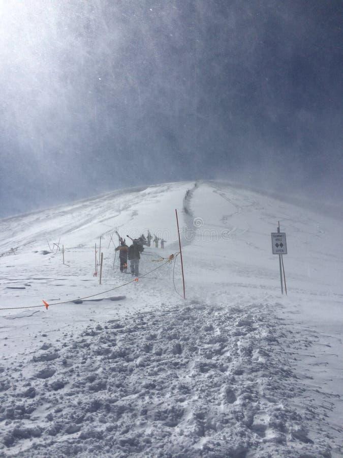 Gipfelwanderung stockbild