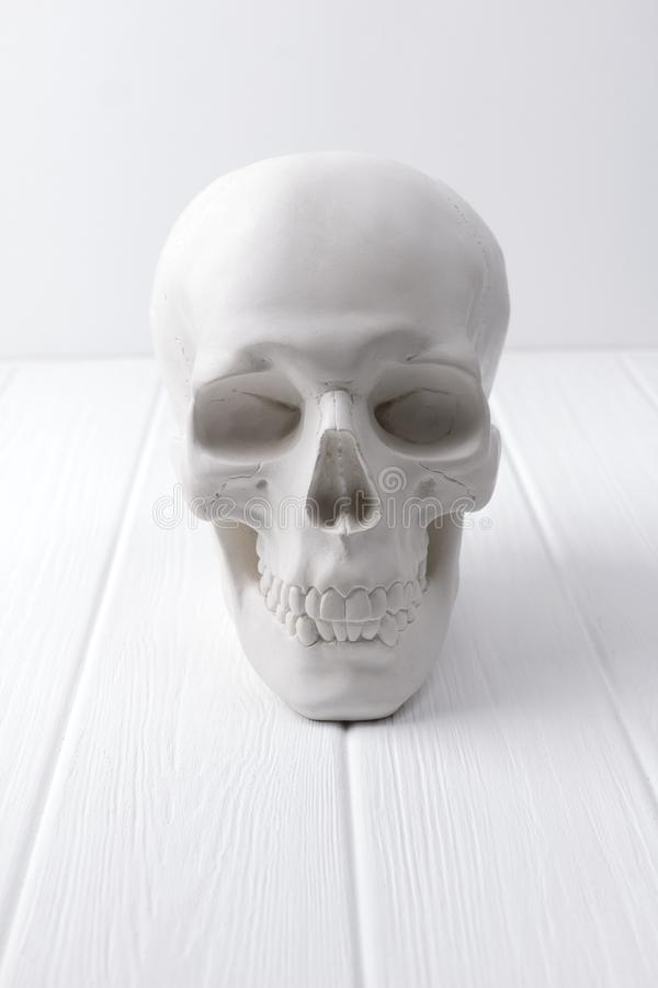 Gips menselijke schedel bij witte houten lijst royalty-vrije stock foto's