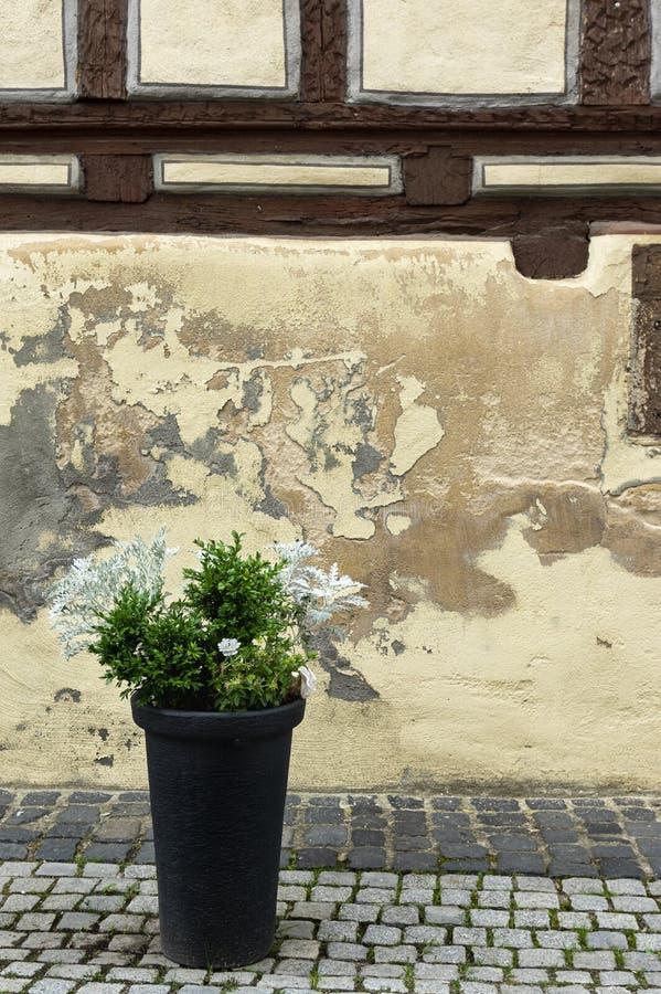 Gipsuje pochylanie i maluje przy inaczej pięknie wznawiającym ryglowym domem na brukowiec ulicie obrazy stock