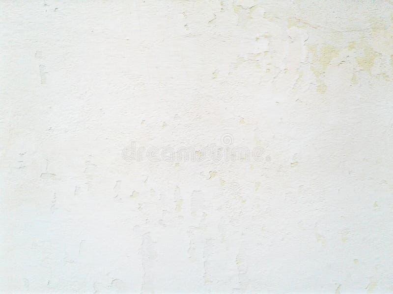 Gipsuje teksturę Grungy szorstki cement ściany tło i tekstura ilustracja wektor
