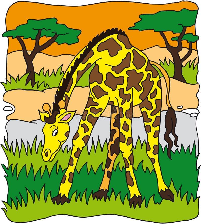 Giraf vector illustratie