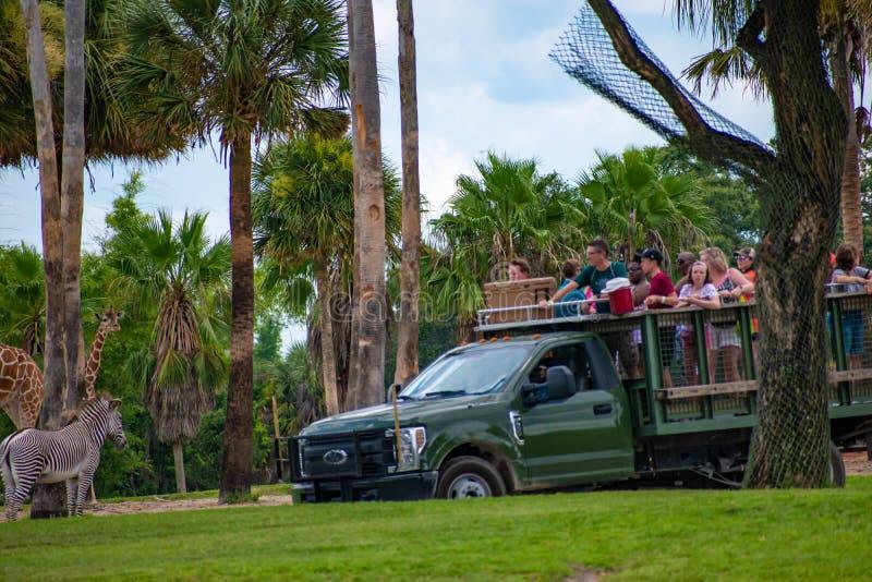 Giraf het wachten slabladeren van mensen die, safari bij Busch-Tuinen 9 genieten van royalty-vrije stock afbeeldingen