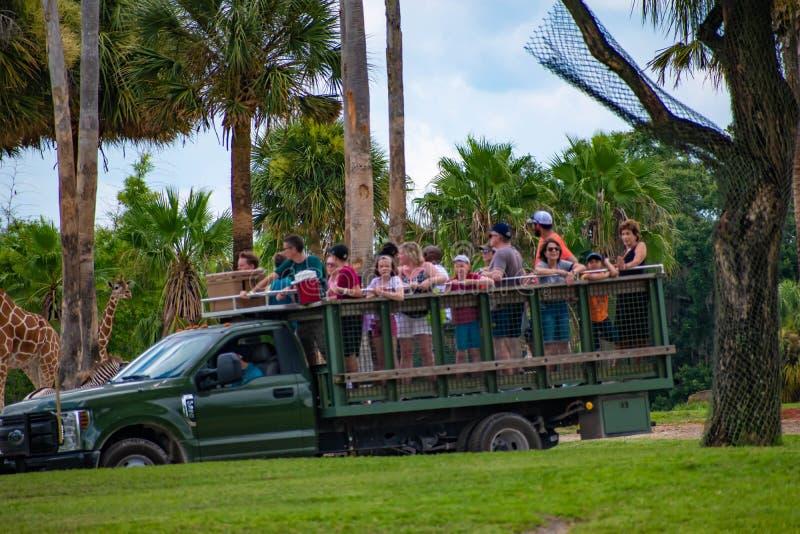 Giraf het wachten slabladeren van mensen die, safari bij Busch-Tuinen 11 genieten van stock afbeelding