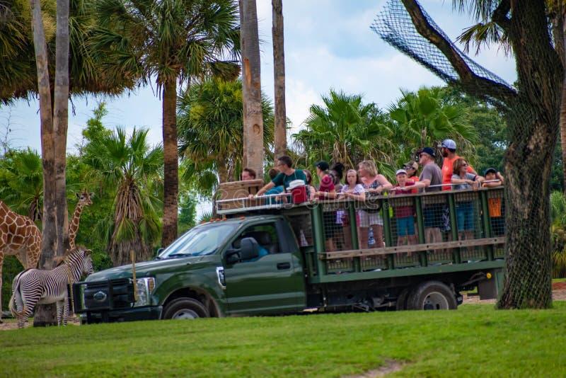 Giraf het wachten slabladeren van mensen die, safari bij Busch-Tuinen 10 genieten van royalty-vrije stock afbeelding