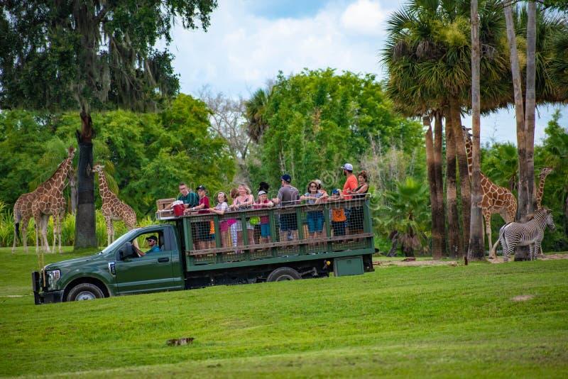Giraf het wachten slabladeren van mensen die, safari bij Busch-Tuinen 13 genieten van royalty-vrije stock foto