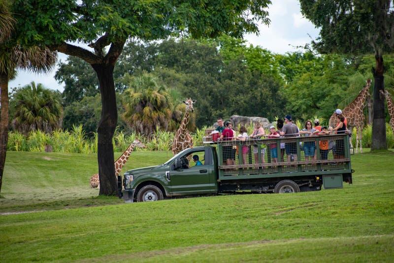 Giraf het wachten slabladeren van mensen die, safari bij Busch-Tuinen 15 genieten van royalty-vrije stock fotografie
