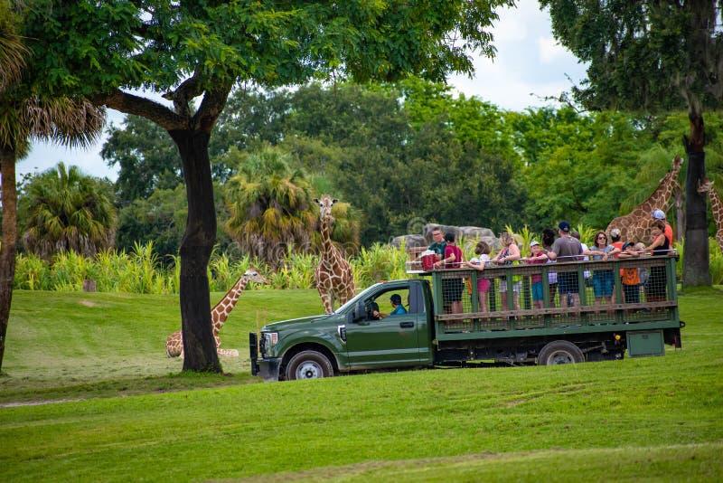 Giraf het wachten slabladeren van mensen die, safari bij Busch-Tuinen 14 genieten van royalty-vrije stock foto's