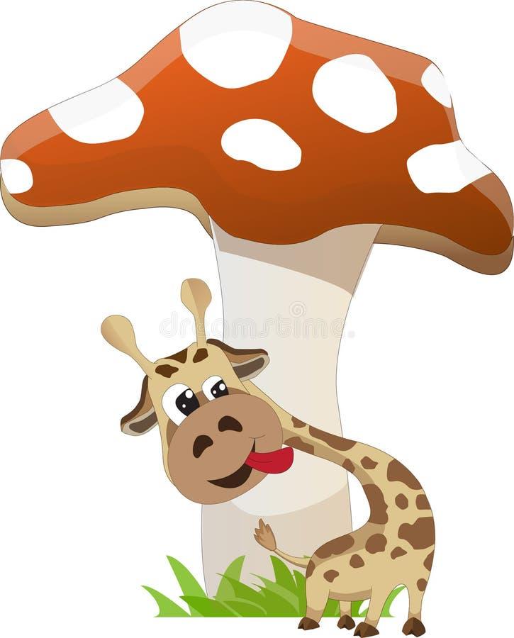 Girafa e cogumelo fotografia de stock