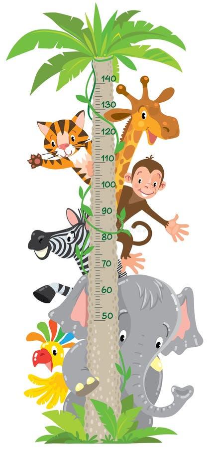 Girafa, macaco, tigre Parede do medidor ou carta da altura ilustração do vetor
