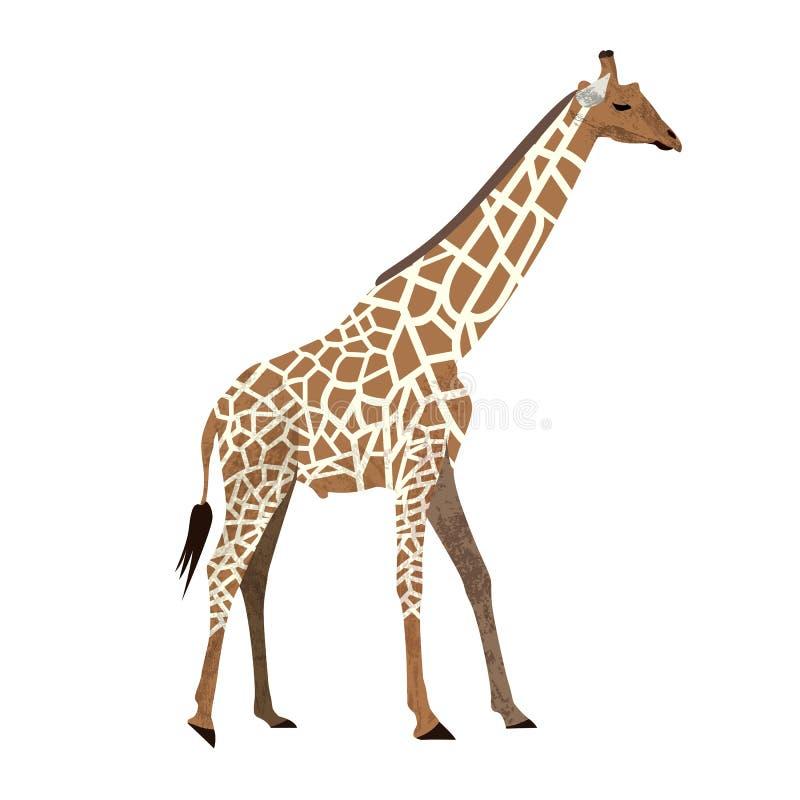 Girafa pequeno do projeto na moda bonito dos desenhos animados com olhos fechados Ícone animal africano da ilustração do vetor do ilustração do vetor