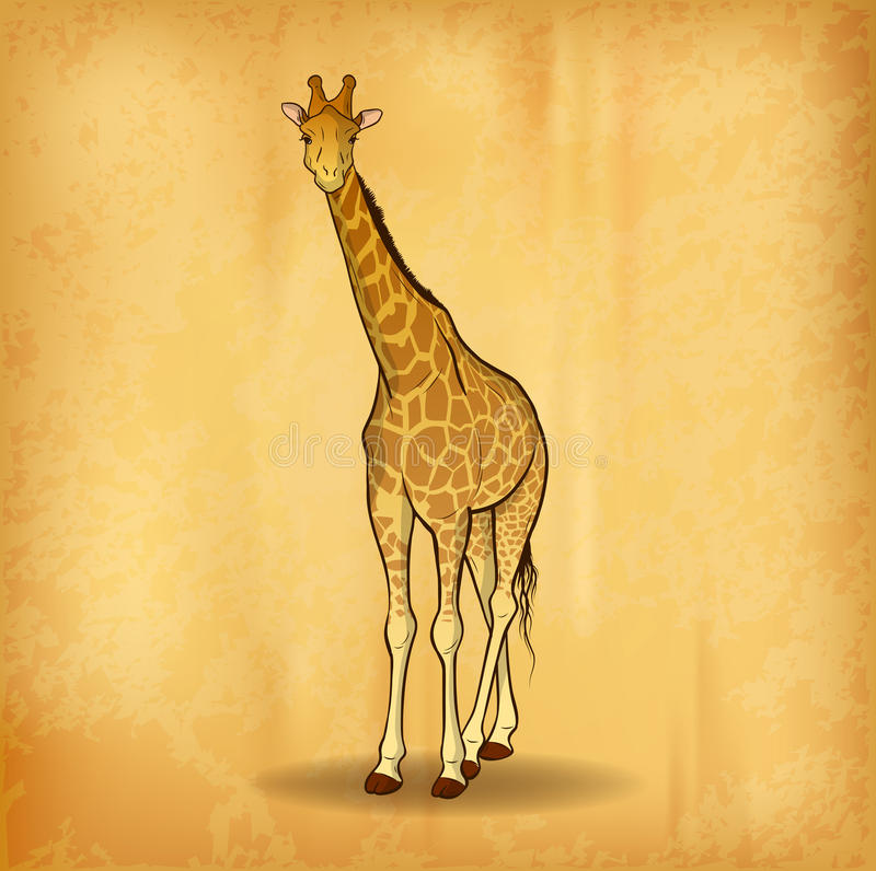 giraff stock illustrationer