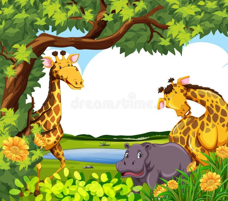 Giraff och flodhäst vid dammet stock illustrationer