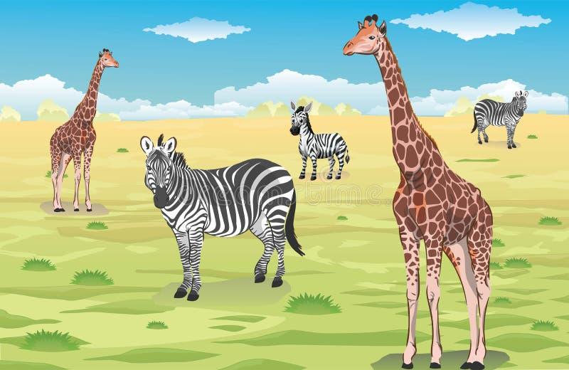 Giraff och sebror stock illustrationer
