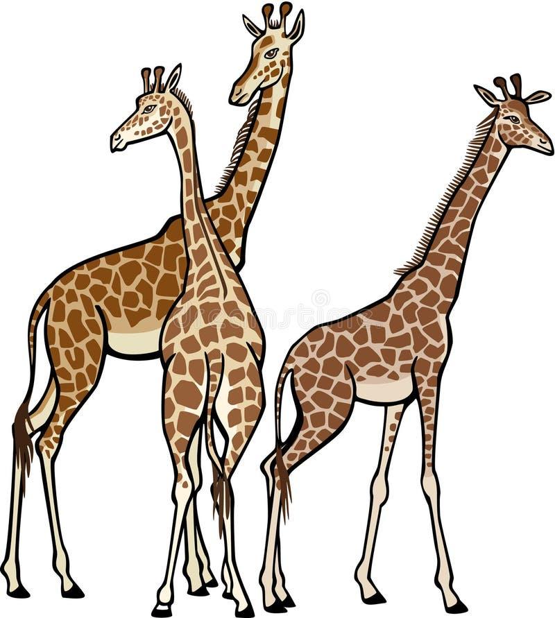 giraff tre stock illustrationer