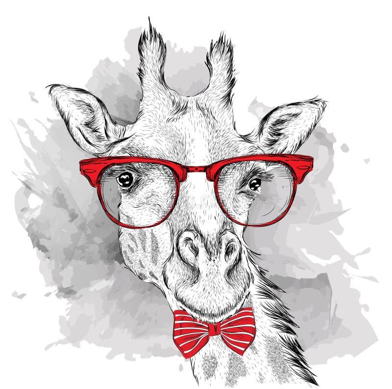 Giraffa del ritratto di immagine nel foulard e con i vetri Illustrazione di vettore di tiraggio della mano royalty illustrazione gratis