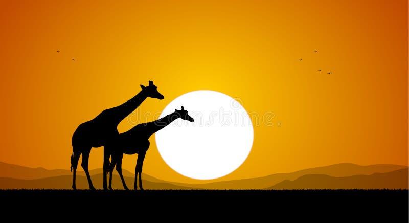 Giraffa due contro il tramonto e le colline Siluetta illustrazione di stock