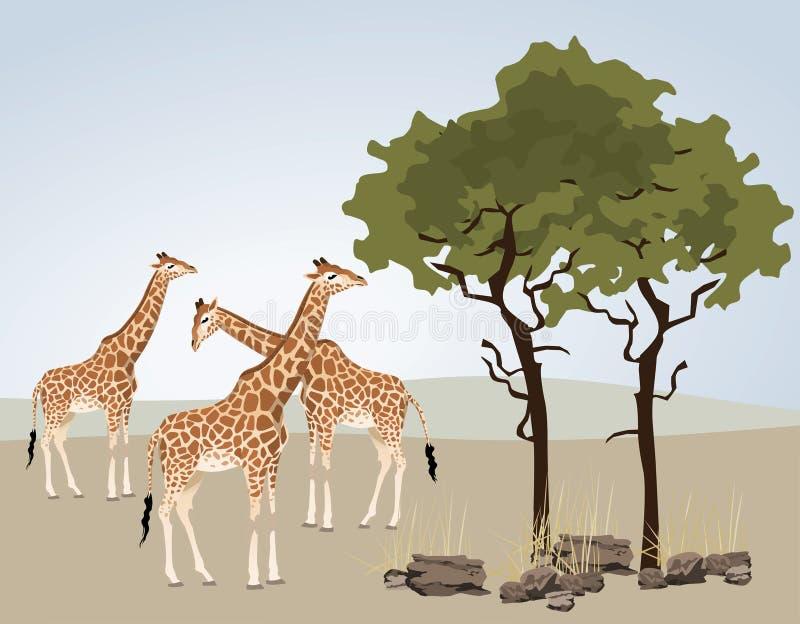giraffe απεικόνιση αποθεμάτων