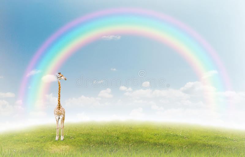 Giraffe illustration libre de droits