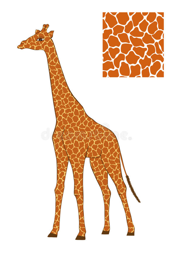 Download Giraffe Stock Image - Image: 25293751