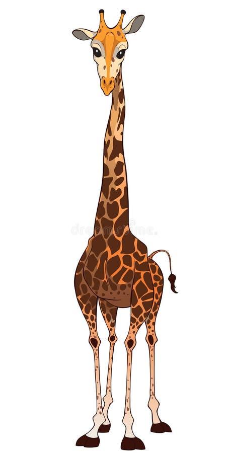 Download Giraffe stock vector. Illustration of graphic, cartoon - 26113049
