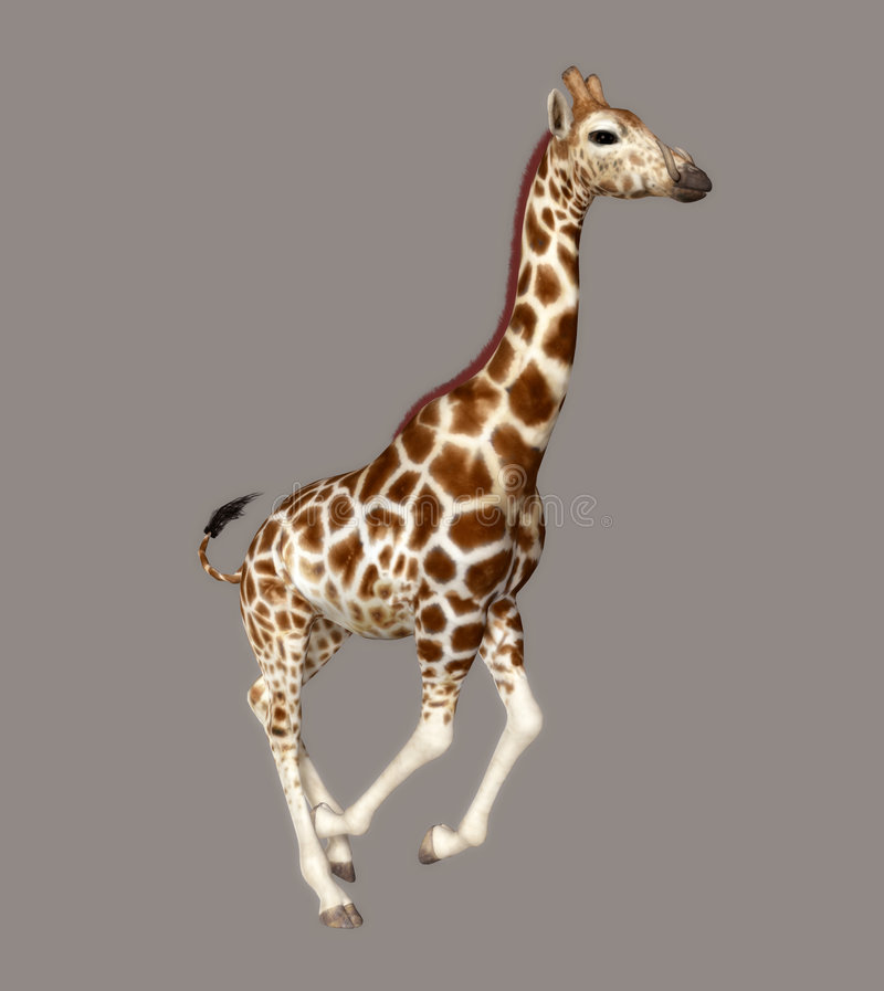 Download Giraffe stock illustration. Image of silhouettes, render - 5884421