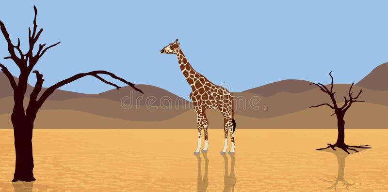 Download Giraffe in desert stock illustration. Illustration of death - 12900565