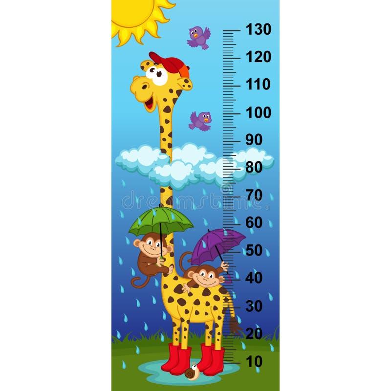 Giraffe height measure. (in original proportions 1:4) - vector illustration, eps stock illustration