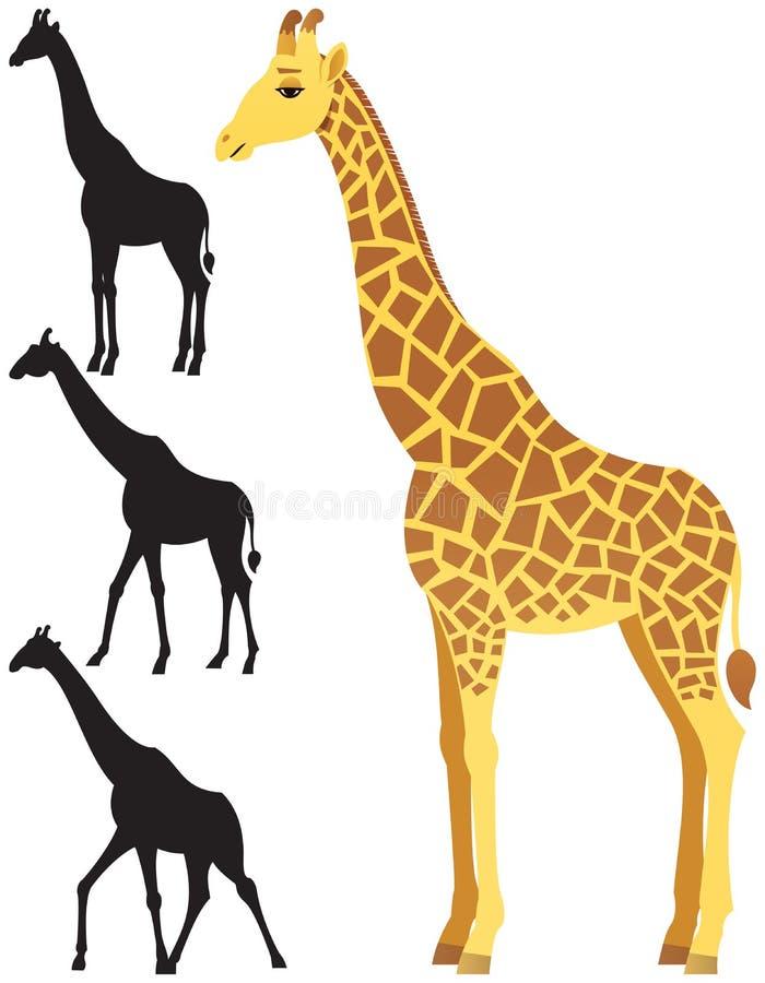 giraffe stock vector illustration of africa clip clipart 64580345 rh dreamstime com giraffe clip art pictures giraffe clip art pictures