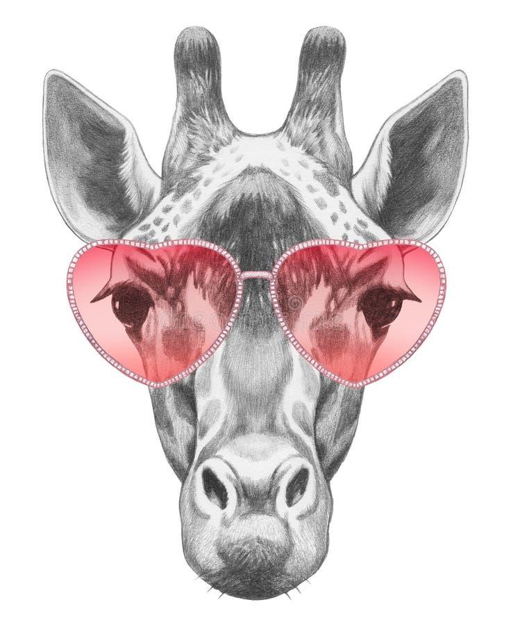Giraffe in Love! Portrait of Giraffe with sunglasses. royalty free illustration