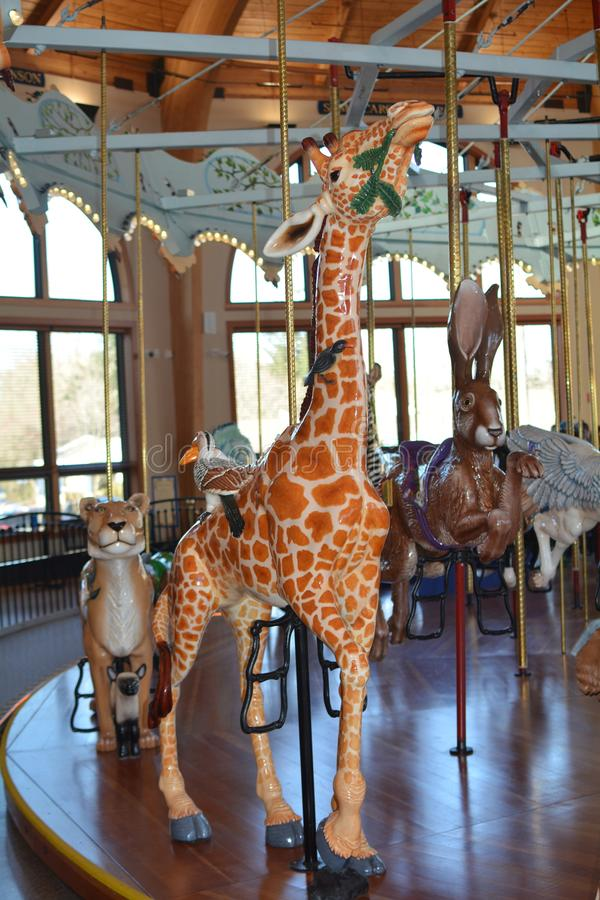 Giraffe merry-go-round ride in Albany, Oregon. There are over 50 hand-carved animals on an antique mechanism, plus exhibits of historic carousel artefacts at the royalty free stock image
