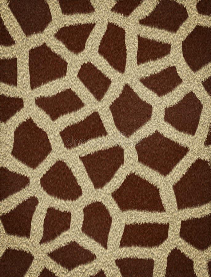 Giraffe-Pelz lizenzfreie stockfotos