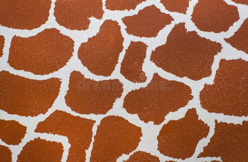 Giraffe skin texture stock photos