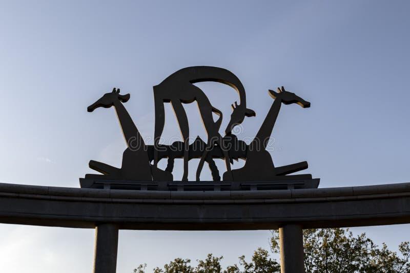 Giraffe statue at Blijdorp zoo Rotterdam. A statue of giraffes at the Blijdorp zoo in Rotterdam royalty free stock image